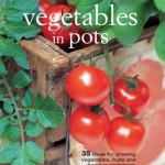 Vegetables in Pots £12.99